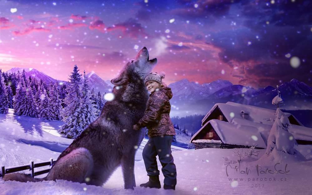 megi a vlk